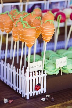 Cake Pops from a Peter Rabbit 1st Birthday Party
