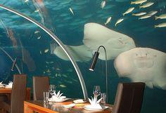 Conrad Maldives Restorant