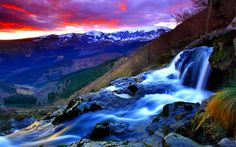 Mountain Stream Picture
