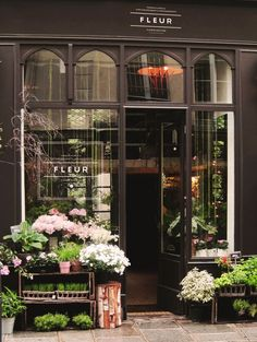 Obviously we're not opening a flower shop but I love the simplicity and dark colors