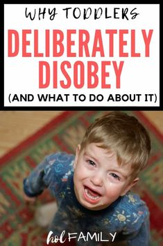Check out these 7 reasons why toddlers deliberately disobey and some positive parenting tips and tricks to end challenging behaviors and prevent them from happening in the first place. Parenting Toddlers, Parenting Books, Gentle Parenting, Parenting Teens, Parenting Advice, Parenting Classes, Peaceful Parenting, Parenting Styles, Parenting Quotes