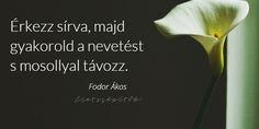 Képes idézetgyűjtemény szómíves érzelmiségieknek Fodor Ákos költő-műfordítótól   Szépítők Magazin Motto Quotes, Life Quotes, Messages, Haiku, Touch, Quotes About Life, Quote Life, Living Quotes, Quotes On Life