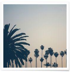 Echo Park Palms - Catherine McDonald - Premium Poster