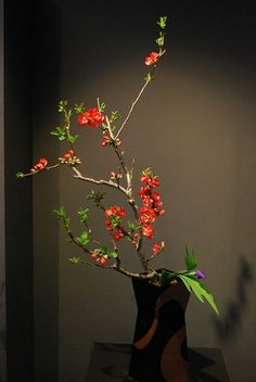 (Kyoto Ikebana Exhibition Japanese flowers...)