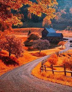 Vermont on my mind