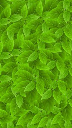 Leaf, abstract, digital art, 720x1280 wallpaper