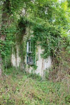 Abandoned cottage Gainesville fl