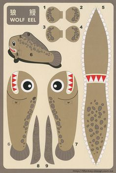 Wolf Eel - Cut Out Postcard by Shook Photos, via Flickr