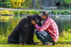 Blog — BlackDog Pet Photography