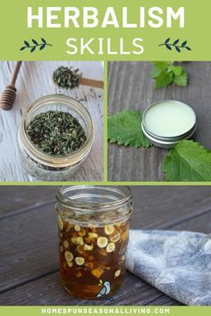 Increase your herbalism skill level with these projects for beginners and advanced like. Have fun creating healing remedies, making DIY body products, eating herbs, and much more. Get the tips and tricks on our blog so that you gain more confidence using herbs at home. #diyideas #herbalremedies #naturalremedies #EffectsOfGreenCoffeeBeanWeightLoss