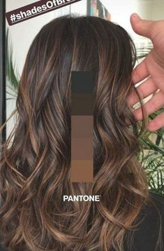 Brown Hair Balayage, Balayage Brunette, Brunette Hair, Hair Highlights, Ombre Hair, Hair Inspo, Hair Inspiration, Shades Of Brunette, Hair Trends