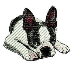 Boston Terrier Embroidery Design Dog Puppy