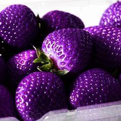 500Pcs Purple Strawberry Seeds Garden Seeds Fruit Seeds Super Strawberry Garden Climbing Plant #seedsgardening