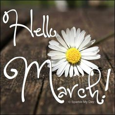 Hello March! Seasons Months, Days And Months, Months In A Year, Hello March Images, Hello March Quotes, May Month Quotes, Whatsapp Pictures, March Month, 25 March