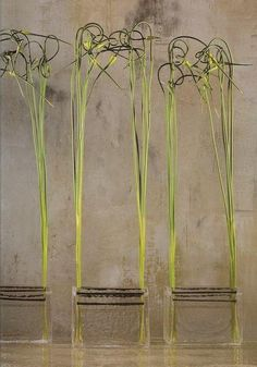 Daniel Ost Diy Flowers, Flower Decorations, Art Floral, Daniel Ost, Environmental Sculpture, Flora Design, Flower Artists, Wedding Canopy, Language Of Flowers