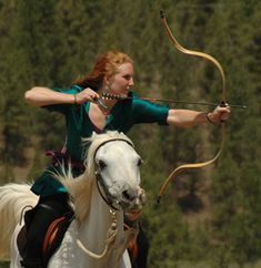Google Image Result for http://www.lynnwoodwarddesign.com/images-Archery/Woodward-Arch72207_1510e.jpg