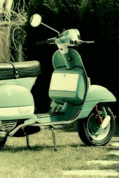 I'm trying to convince my mom to let me buy a moped!