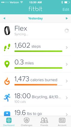 Fitbit  results from February 13th