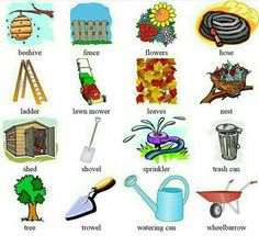 English Time, British English, English Idioms, English Fun, English Study, English Class, English Lessons, Teaching English, Learn English