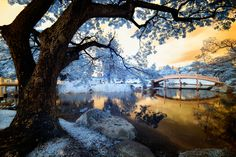 Autumn tactics. by Nathan Hayag, via 500px