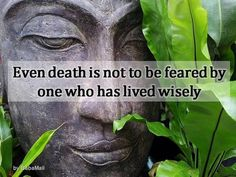 These inspiring Buddha quotes are great food for thought!