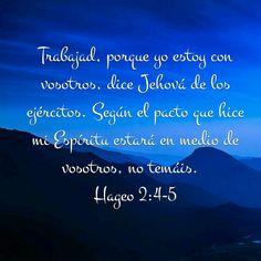 Hageo 2: 4 al 5