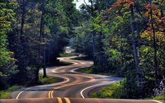beautiful roads in the World - Bing Images Forest Road, Tree Forest, Autumn Forest, Forest River, Images Wallpaper, Wallpaper Backgrounds, Photo Wallpaper, Beautiful Roads, Beautiful Places