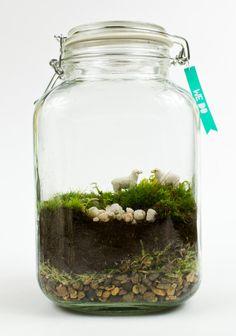 WE DO // Moss Terrarium Wedding Gift by MossLoveTerrariums on Etsy, $41.00