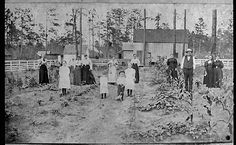 Early settlers in their garden, Fitzgerald, Ben Hill County, Georgia, 1896