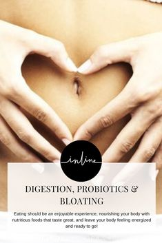 Poor digestive health can result in uncomfortable symptoms after eating. Bloating, gas, stomach pain & reflux are common in those suffering with poor gut health Plant Based Protein Powder, Plant Based Diet, Gut Health, Healthy Living, Healing, Medical, Blog, Healthy Life, Blogging