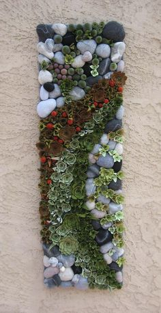 How does your garden grow Made to order succulent by miasole (diy flower arrangements wall)How does your garden grow - So bringen Sie Ihren Garten zum Wachsen.Felt plants and faux stones arrangement.Felt succulent plant little square summer garden Ve Vertical Succulent Gardens, Succulent Gardening, Cacti And Succulents, Planting Succulents, Container Gardening, Planting Flowers, Vegetable Gardening, Gardening Tips, Succulent Ideas