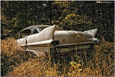 Abandoned Cars, how could anyone forget this beauty?