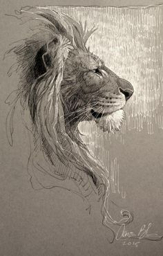 lion art - lion art ` lion art drawing ` lion art for kids ` lion art black and white ` lion artwork ` lion art wallpaper ` lion art painting ` lion art projects for kids Cat Drawing, Drawing Sketches, Painting & Drawing, Drawing Ideas, Lion Sketch, Cat Sketch, Big Cats Art, Cat Art, Animal Sketches