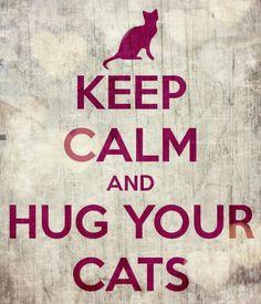 Keep Calm and Hug Your Cats