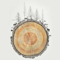 Ilustração por Rebecca Clarke #madeira #floresta #fauna #natureza #reflorestamento #ecologia #flora #sustentabilidade #desmatamento #animais #pinheiros #ilustracao #arte #rebeccaclarke #universoonassis