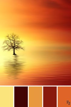 Best Bedroom Colors Schemes – My Life Spot Orange Color Palettes, Color Schemes Colour Palettes, Paint Color Schemes, Colour Pallette, Color Palate, Bedroom Color Schemes, Color Combinations, Orange Palette, Orange Color Schemes