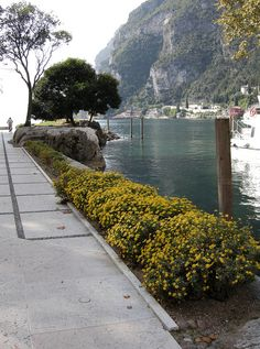 Riva del Garda by ENRSIGN, via Flickr