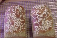 You can whip up this delicious healthy oatmeal bread in just 5 minutes! - Oatmeal is a very healthy way to start your day. Oatmeal is naturally very healthy. Oatmeal Bread, Chocolate Chip Oatmeal, Gluten Free Donuts, Gluten Free Pumpkin, Chocolate Lasagne, Healthy Cooking, Healthy Recipes, Bread Substitute, Food Crush