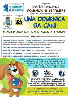 """Con """"Una Domenica da Cani"""" divertimento e beneficienza a Piscina…"""