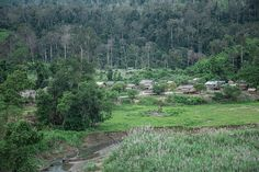 File:Village in the forest. Wikimedia Commons, Vineyard, Mountains, Nature, Travel, Outdoor, Outdoors, Naturaleza, Viajes