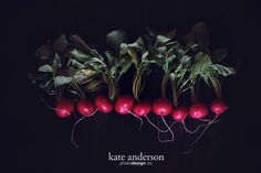 Ravishing Radish | Kate Anderson l Photo & Design