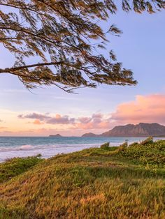 Hawaii Sunrise - Bellows Beach