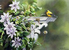 花鸟画   艺术家 Susan Bourdet - 湾仔 网站