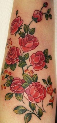 Old-timey roses