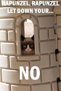 Grumpy Cat in the Castle