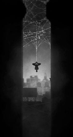 Superheroes: Noir Series, by Marko Manev  Webslinger