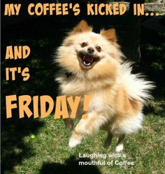 My coffee's kicked in and it's Friday!