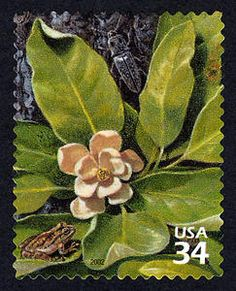 Blind Click Beetle and Pine Woods Tree Frog, a US .34¢ stamp issued April 26, 2002