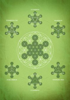 Sacred Geometry - the design of Nature - Geometría Sagrada - el diseño de la Naturaleza