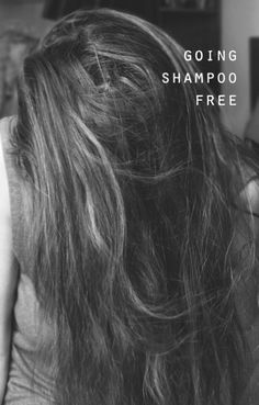 How to go shampoo-free. | The Pursuit of Hippieness--- Defintely trying this for the summer.